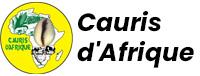 Cauris d'Afrique